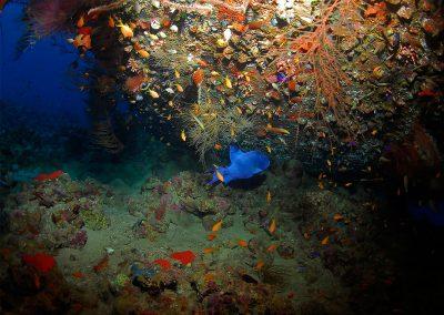 Underwater-03