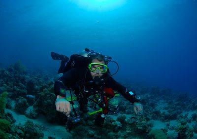 Underwater-23