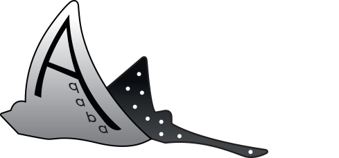 Aqaba Adventure Divers | 5-Stars PADI Dive Center