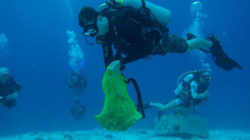 cleanup dives