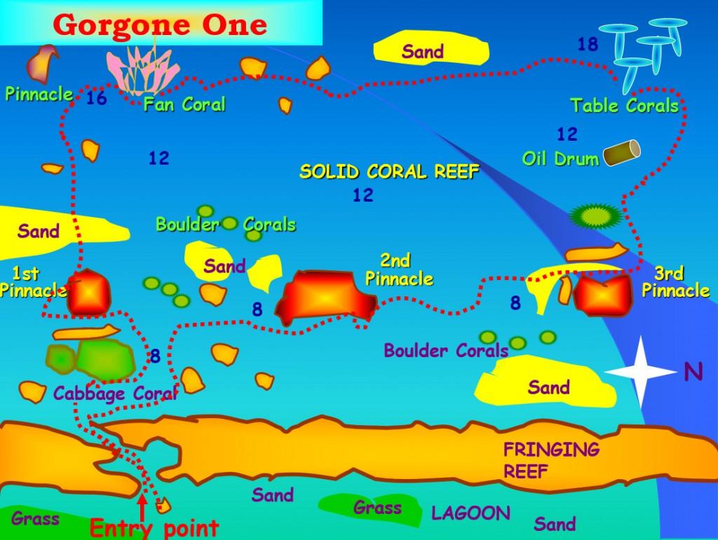 Gorgone I One Dive Site Aqaba