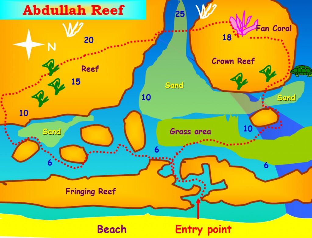 King Abdullah Reef Dive Site Aqaba