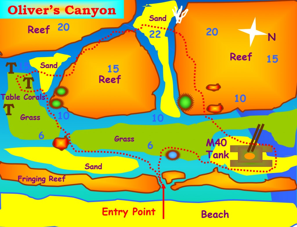 Olivers Canyon Dive Site Aqaba