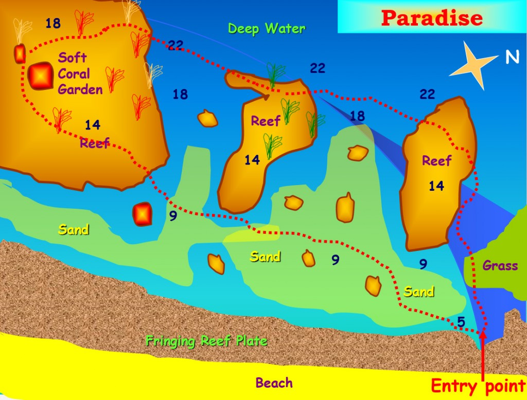 Paradise Dive Site Aqaba Jordan