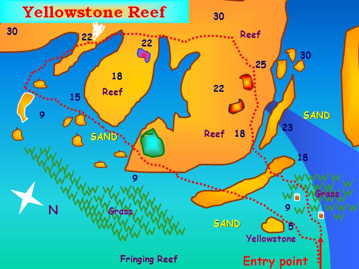 Yellowstone Reef Dive Site Aqaba
